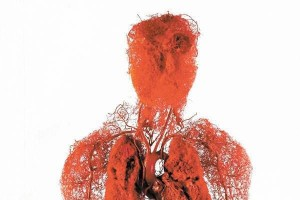 Every kilogram of fat gained requires 25 kms of new blood vessels